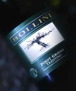 Bollini pinot grigio review