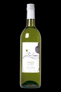 Domaine Guillaman white wine review